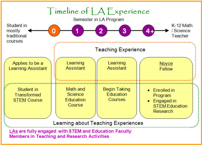 how to become a scholarly teaching fellow